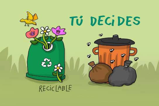 que decides